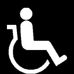wheelchair availability at Black Ball Ferry Line