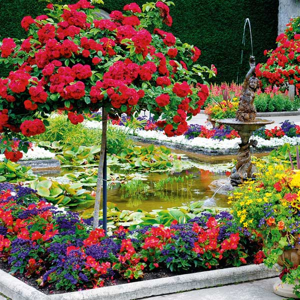 Car Rental Nj >> The Butchart Gardens with Shuttle Transportation and Ferry | Black Ball Ferry Line | Daily ...