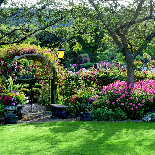 Stroll Along Meandering Paths Through Fifty Five Acres Of Delightful Fl Displays At The Butchart Gardens In 1904 Jennie Began To Beautify A