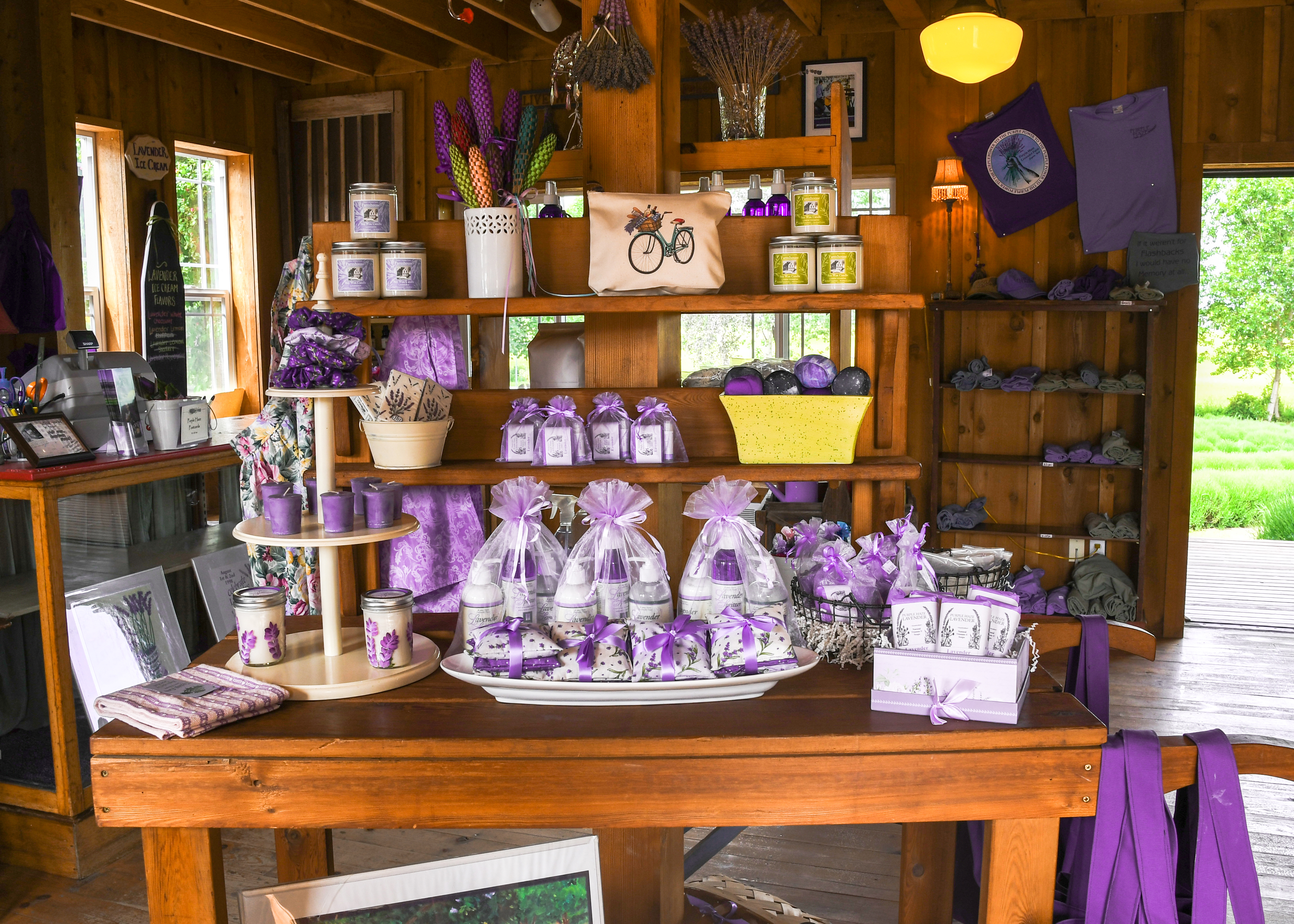 Sequim Lavender Festival   Black Ball Ferry Line   Daily