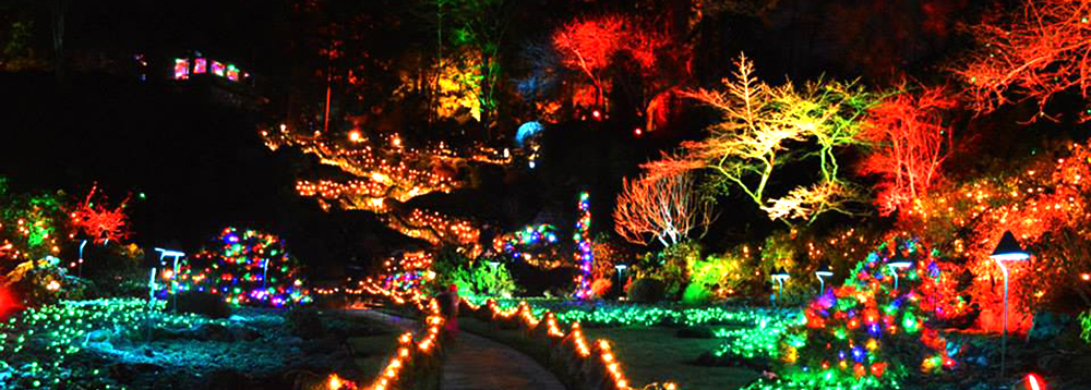 Christmas Magic in Victoria | Black Ball Ferry Line | Daily ...